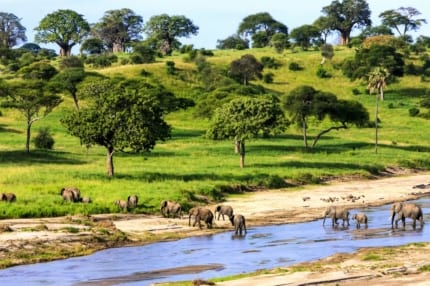 Tanzania is a wilderness paradise. © Shutterstock