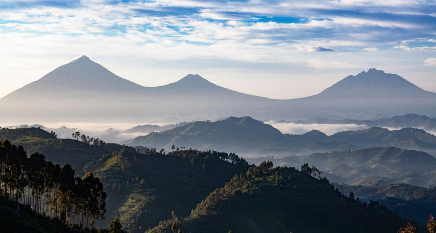 Volcanoes National Park in Rwanda has five volcanoes. © Shutterstock