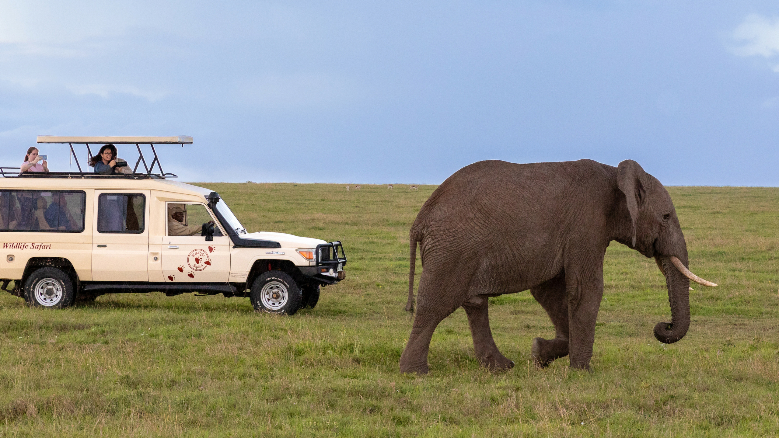Game drives in Kenya are as exciting as they are memorable. © Wildlife Safari