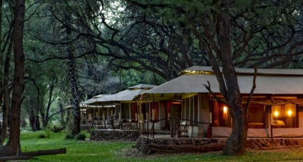 Wilderness Lodges Larsens Camp is tucked away under shady trees. © Wilderness Lodges