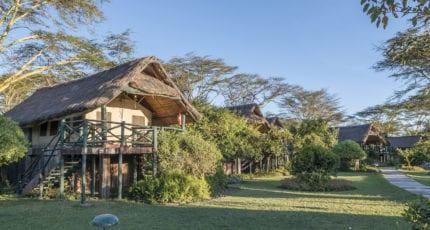 Sweetwaters Serena Camp has 56 stylishly appointed tents. © Serena Hotels