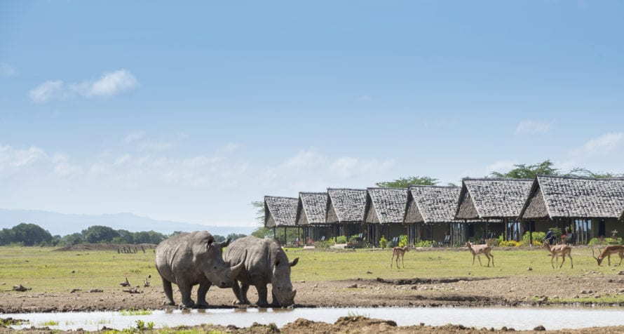 The waterhole at Sweetwaters Serena Camp is a magnet for thirsty animals. © Serena Hotels