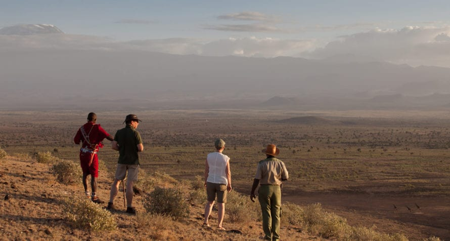 Elewana Tortilis Camp Amboseli offers incredible encounters with an amazing array of creatures. © Elewana Collection