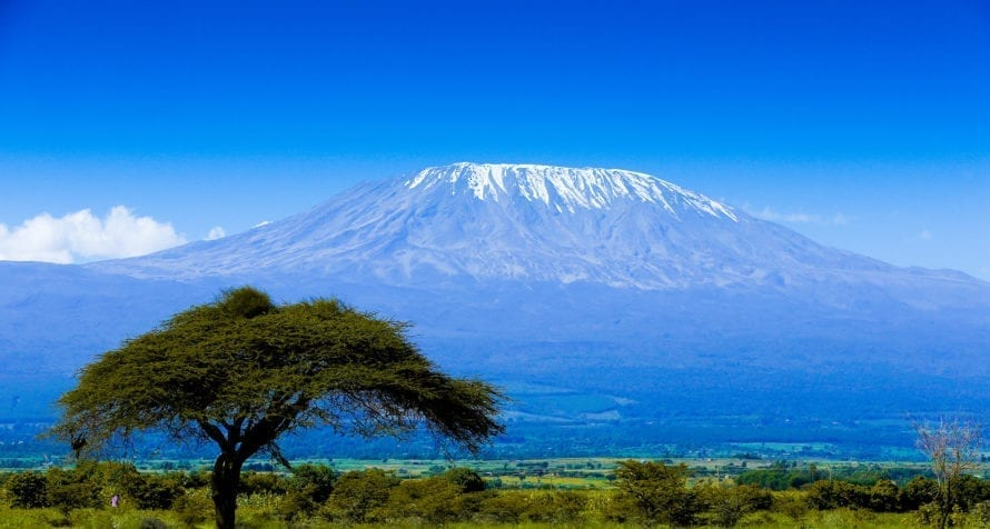 Amboseli is known as Kenya's land of giants. © Shutterstock