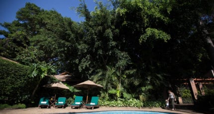 Enjoy a refreshing swim at Elewana Arusha Coffee Lodge. © Elewana Collection