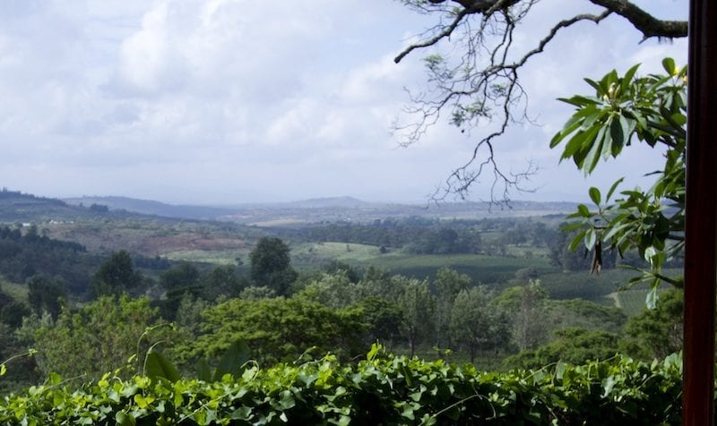 Breakfast comes with dreamy vistas at Gibb's Farm. © Classic Portfolio