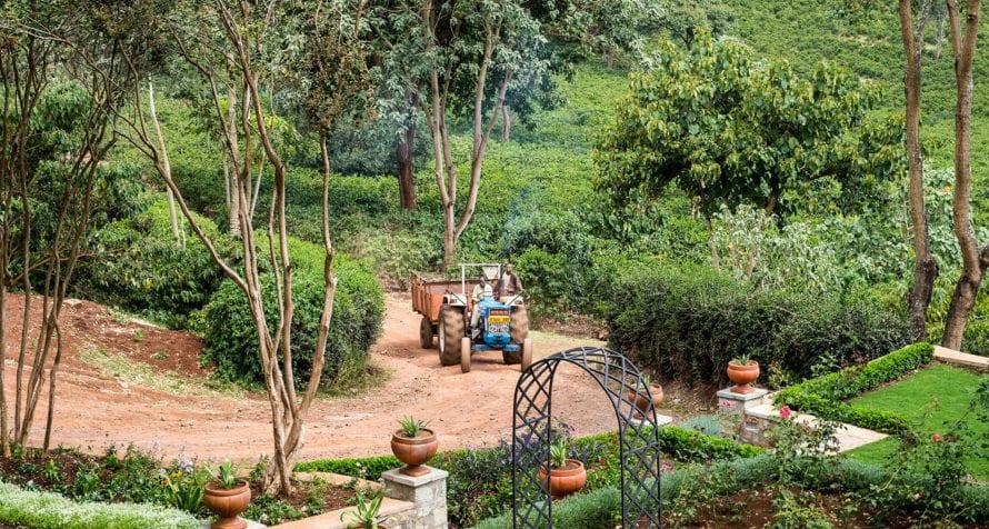 Gibb's Farm is a working farm. © Classic Portfolio