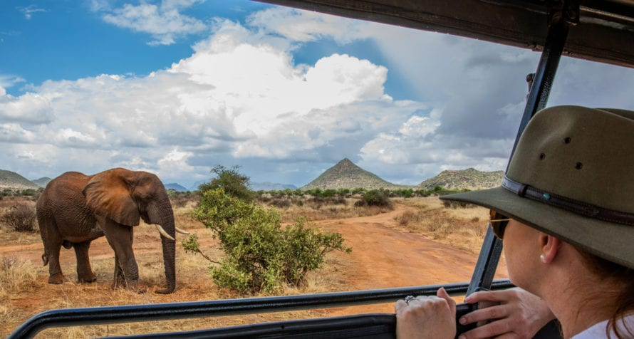 Game drives in Kenya are never dull. © Wildlife Safari