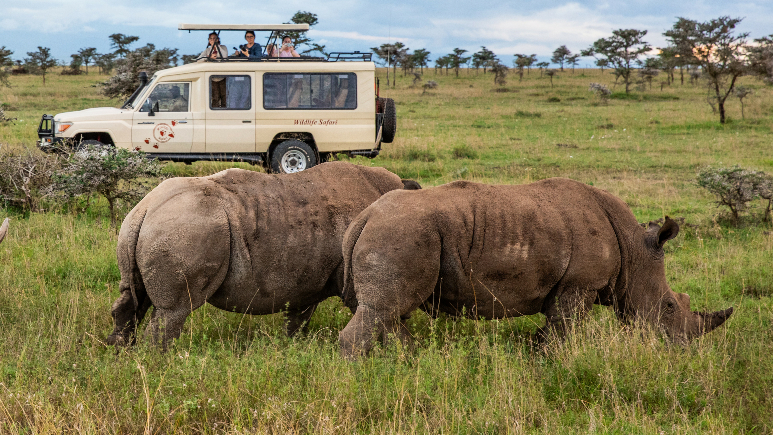 Wildlife Safari offers customised safari vehicles. © Wildlife Safari