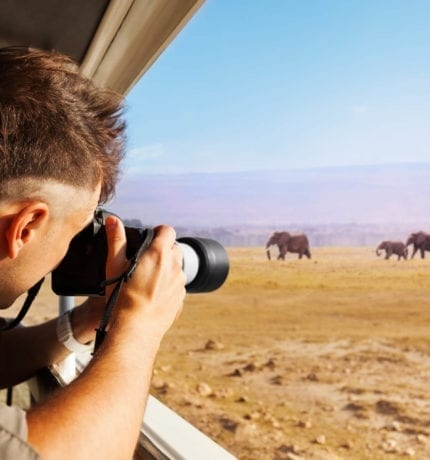 Wildlife Safari Kenya | Unlimited game viewing